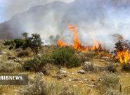 مهار آتشسوزی منطقه کیامکی جلفا